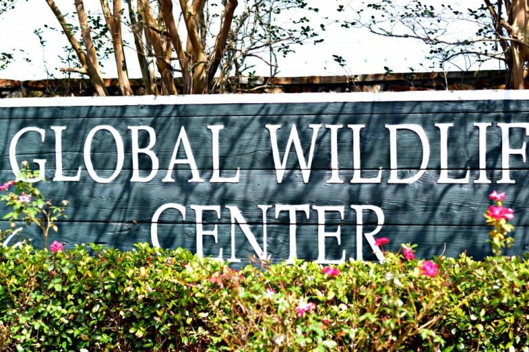 Global Wildlife Center in Louisiana