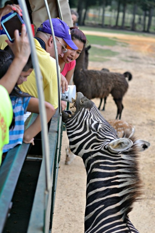 Global Wildlife Center - Folsom, LA