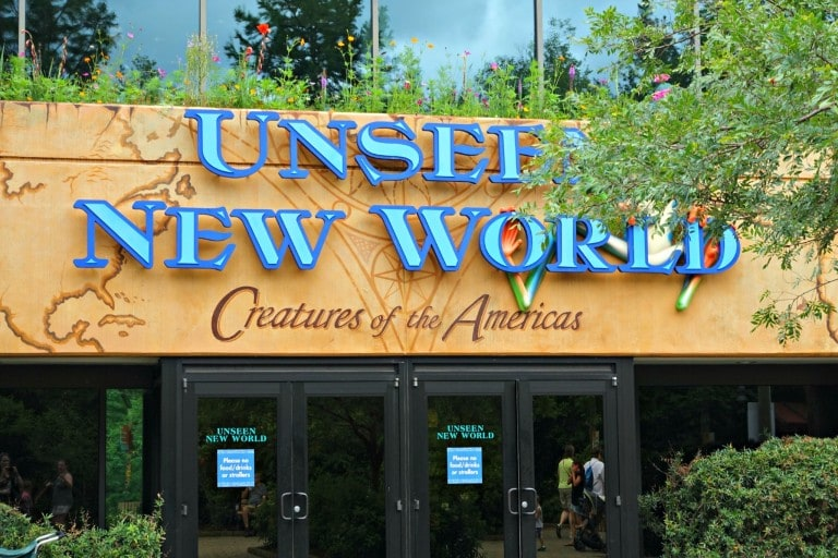 Unseen New World sign