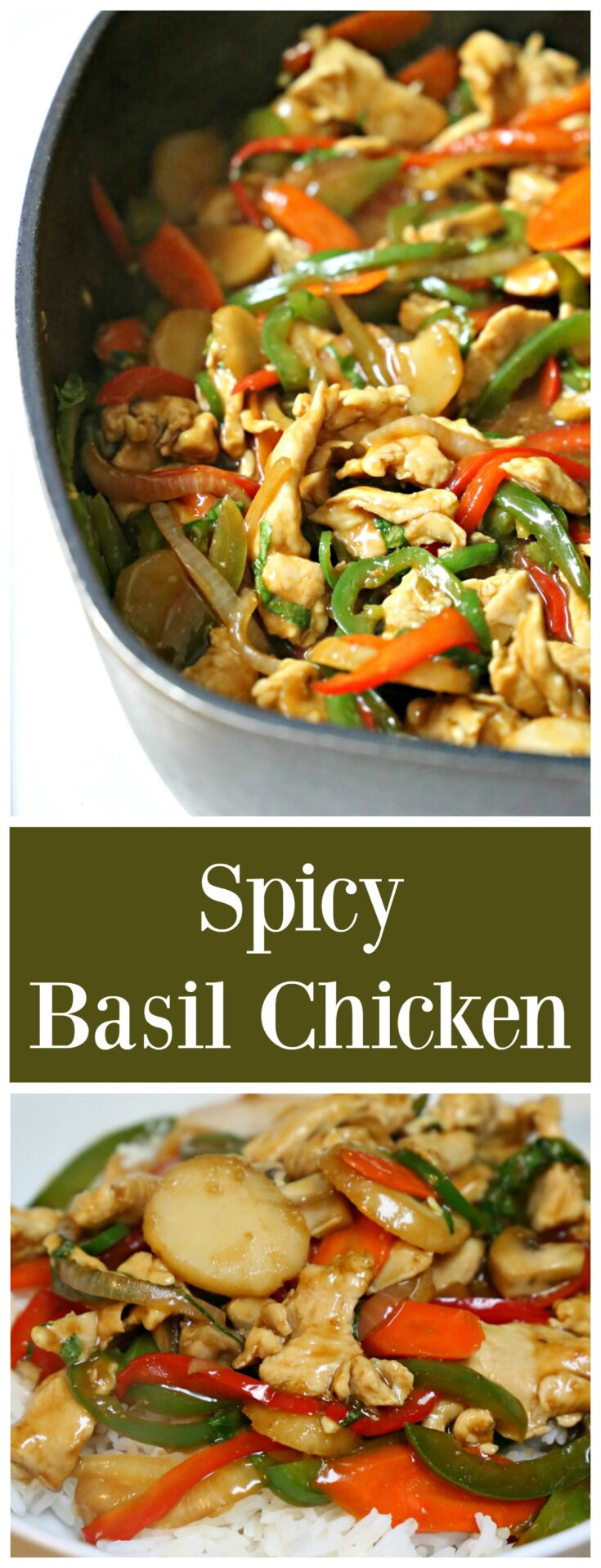 If you like spicy dishes then you are going to LOVE this Thai Spicy Basil Chicken Stir-Fry recipe. The dish is full of veggies and can be prepared in one skillet. Serve with some rice and it's a great Thai dinner for 4-6 hungry folks.
