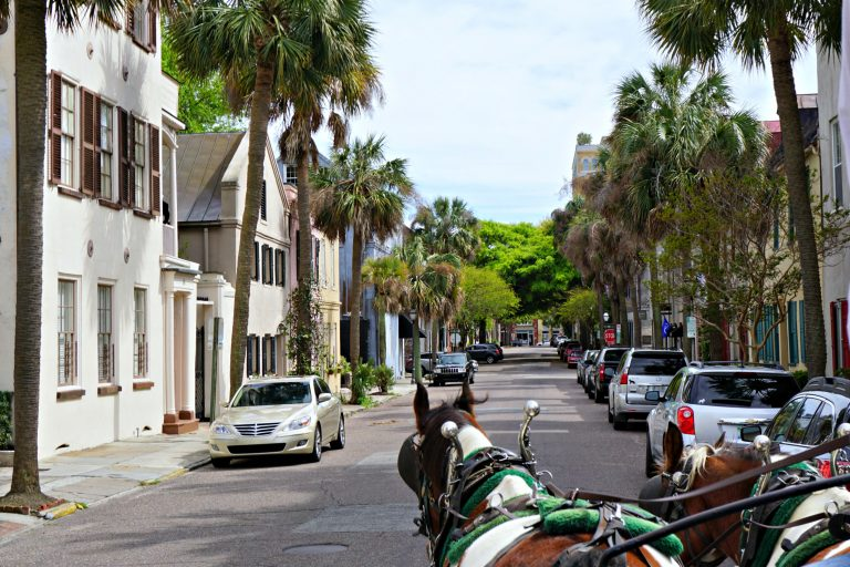 carriage ride in Charleston, South Carolina