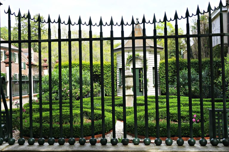 Wrought Iron Gate and oleander
