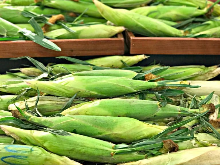 corn at the supermarket