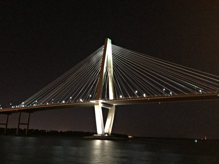 The Arthur Ravenel Jr. Bridge, a cable-stayed bridge, is really awesome lit up at night.