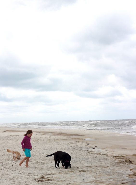 If dog friendly beach vacations are a priority for your family, look no further than Cape San Blas as a destination. It was voted the #1 dog friendly beach in the USA with good reason.