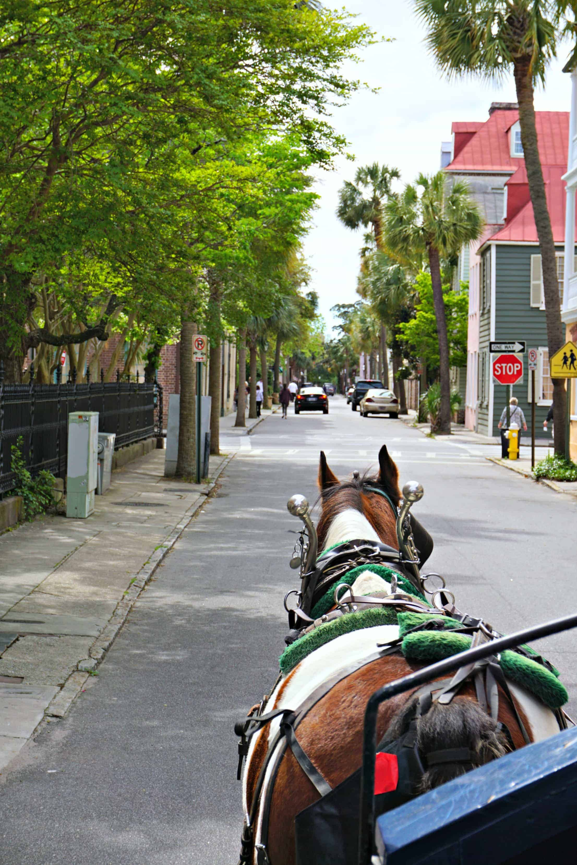 carriage ride in Charleston