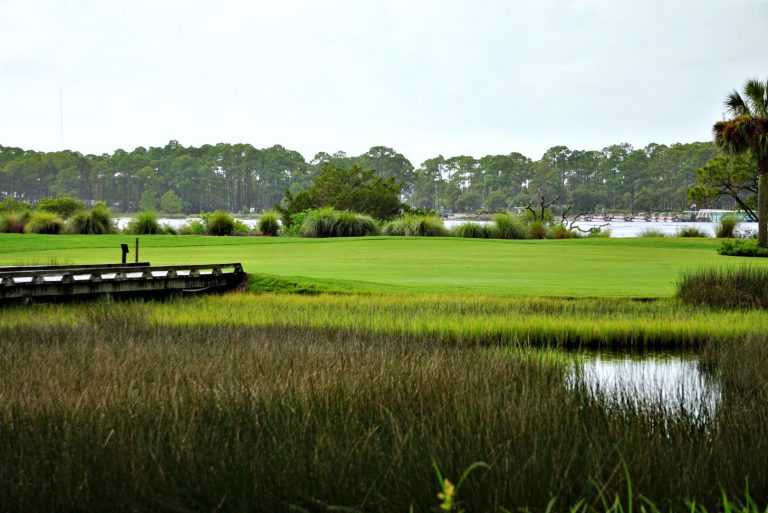 Beautiful golf course view of marsh