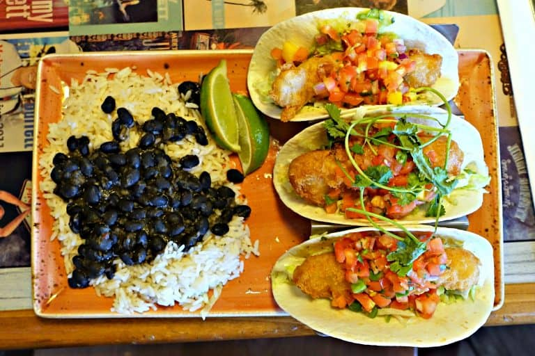 Fish Tacos with rice and black beans at Margritaville Restaurant in Pigeon Forge, Tennessee