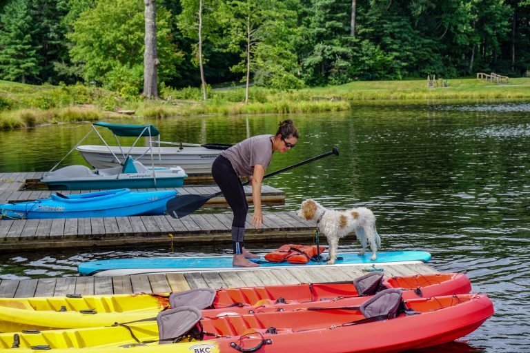 Lady and dog on paddle board