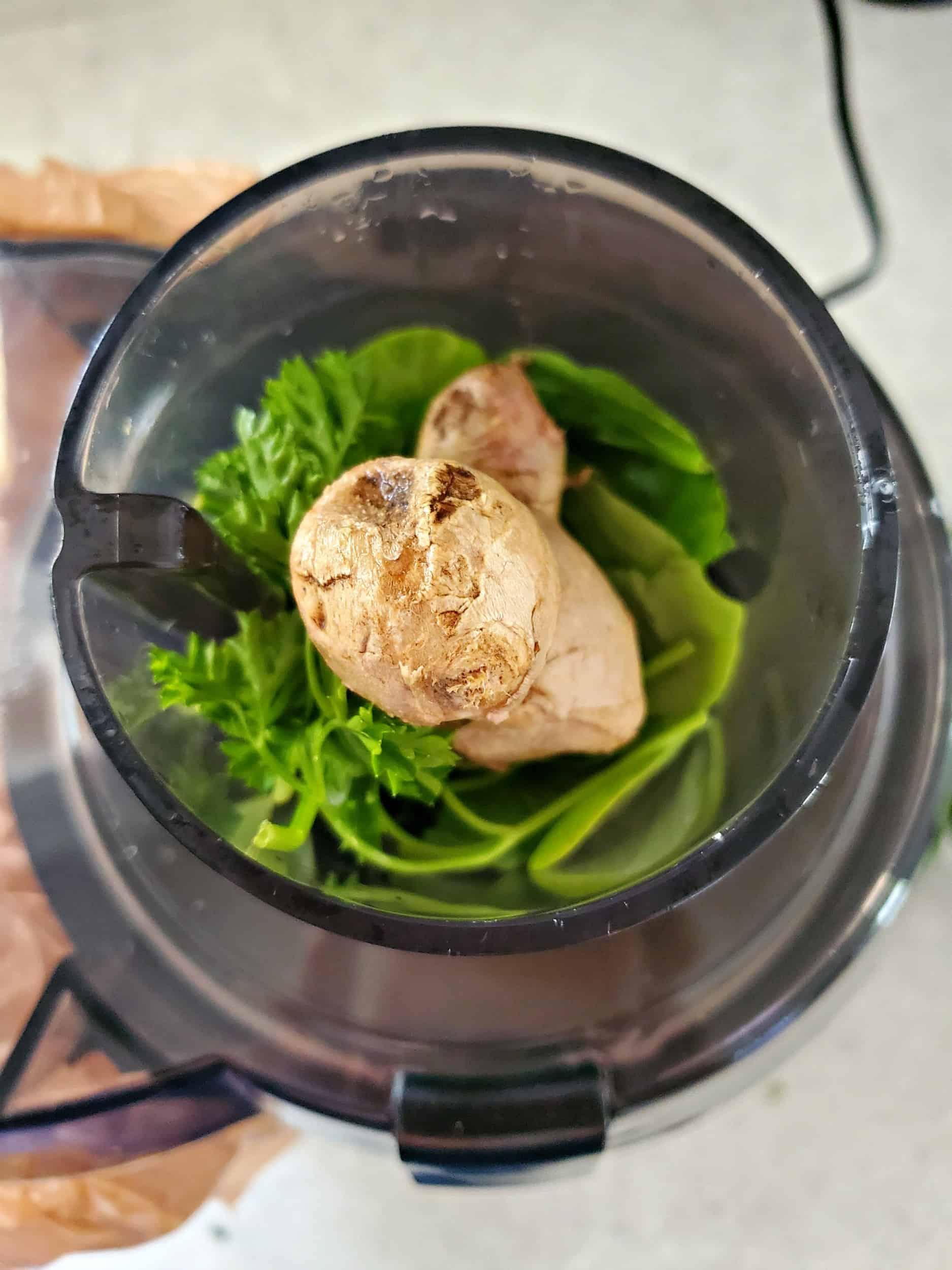 placing ingredients in a juicer