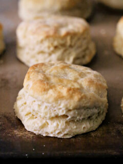 Southern biscuit