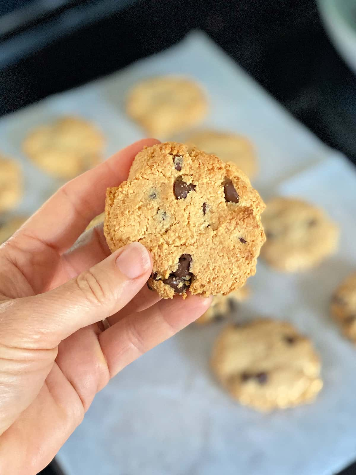 person holding a chocolate chip cookie