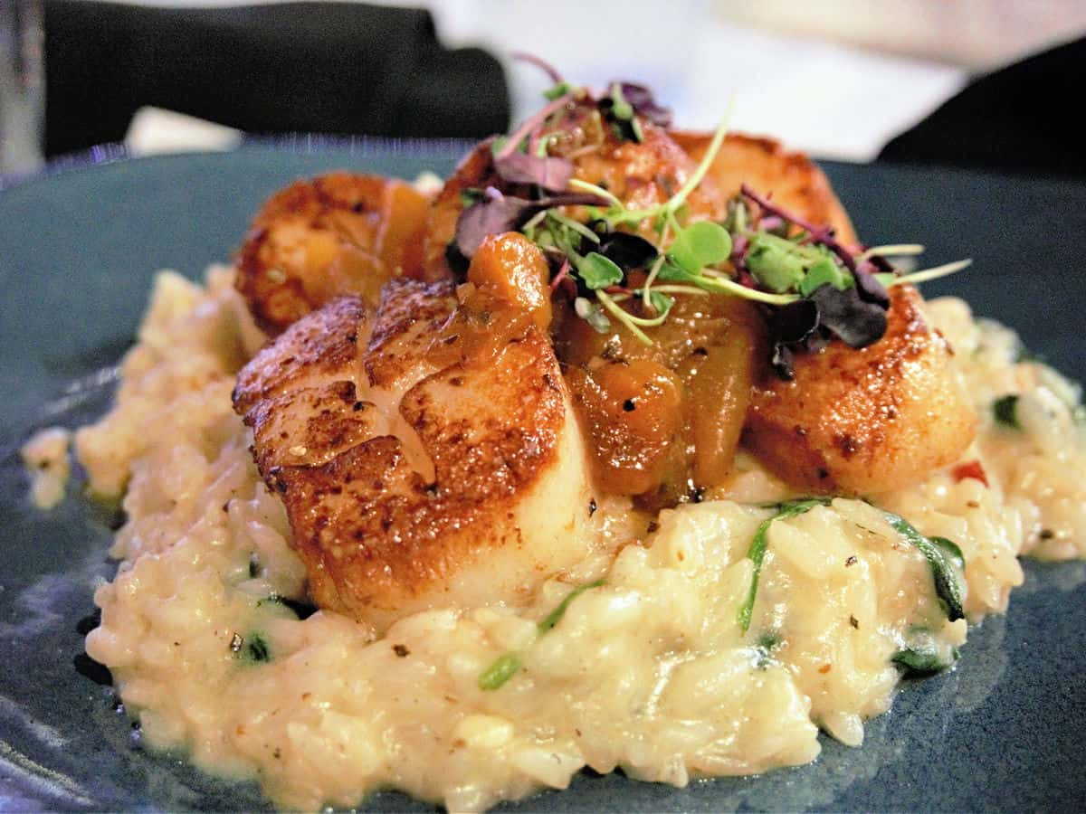 Gray plate with scallops.