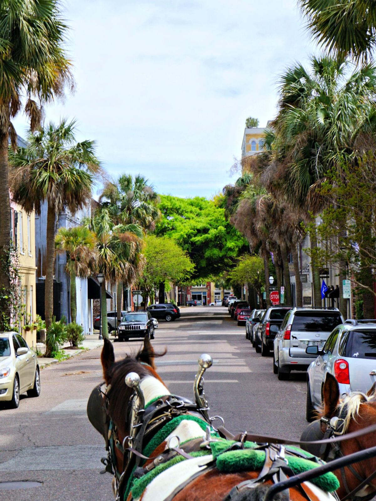 Horse and carriage on a street.
