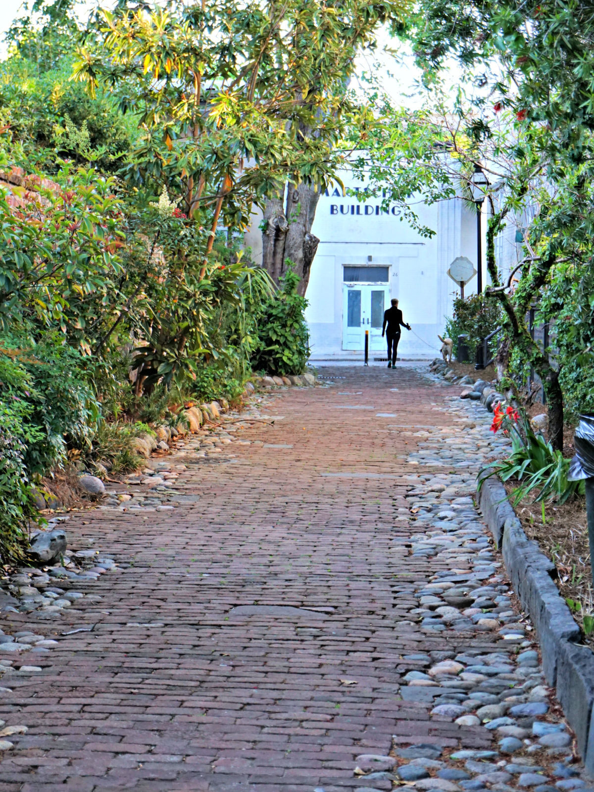 Cobblestone street with woman walking a dog.