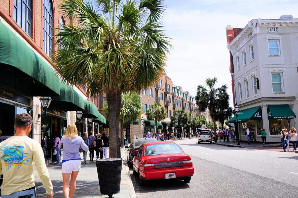 Palm trees along the street in Charleston.